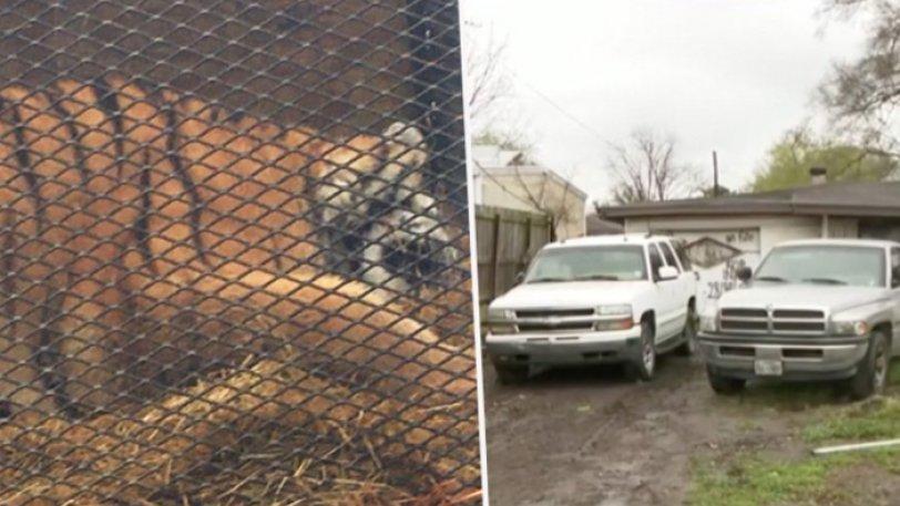 διαρρηξη σε γκαραζ τιγρης safeplace συστηματα ασφαλειας